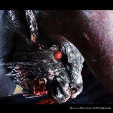 Photo4: No. 465 Trophy-ZODD Frozen Edition 2020 (4)
